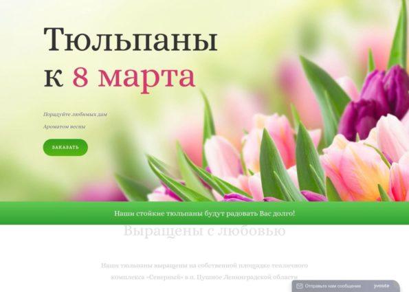 Купить тюльпаны к 8 марта on Divi Gallery