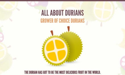 All About Durians