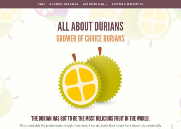 All About Durians on Divi Gallery