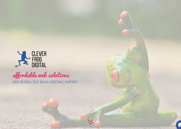 Clever Frog Digital on Divi Gallery