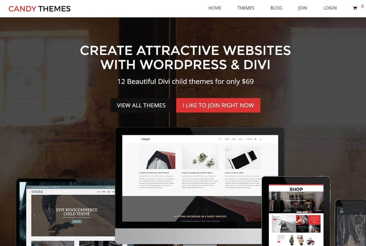 Candy Themes Divi Theme Example