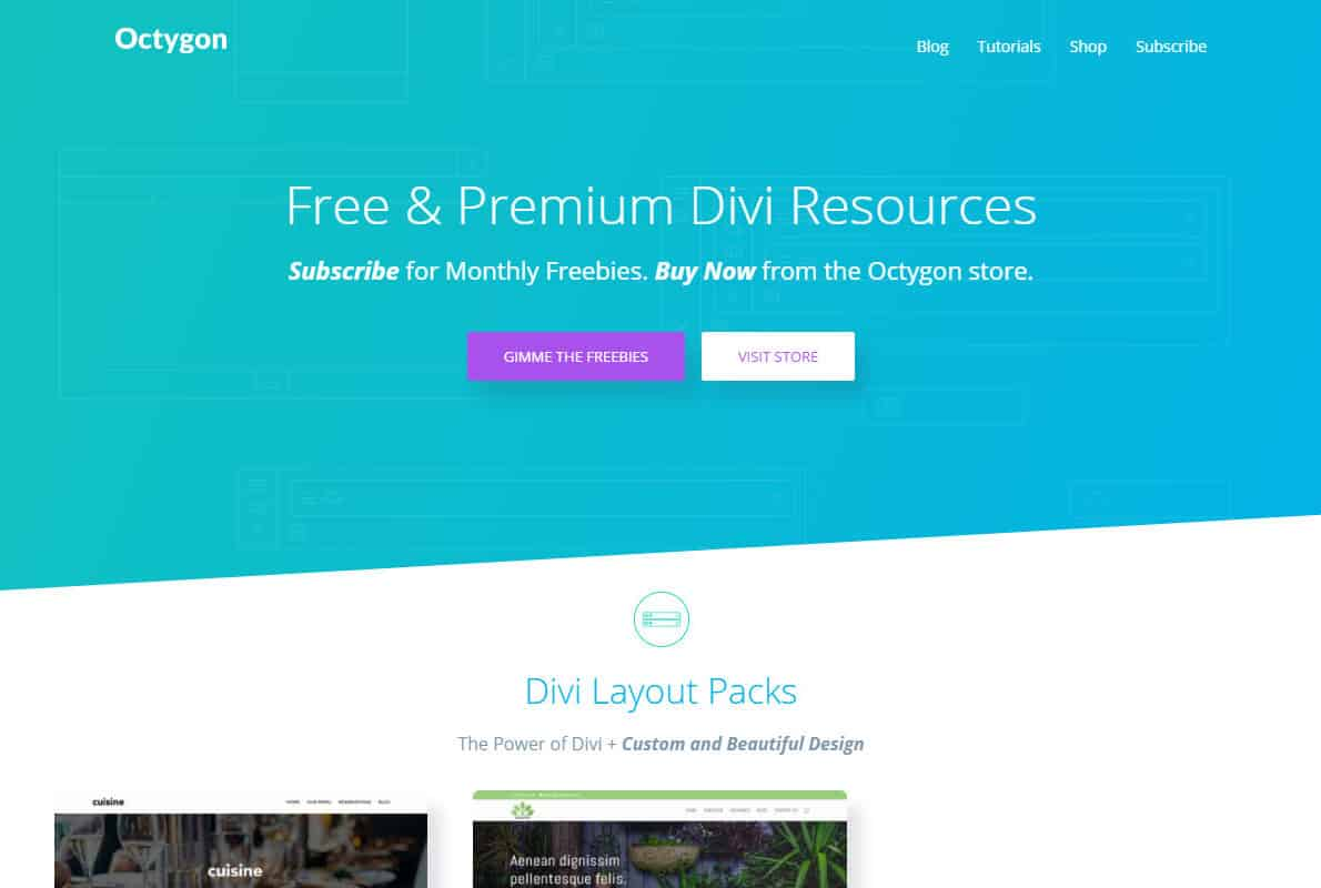 Octygon Divi Theme Example