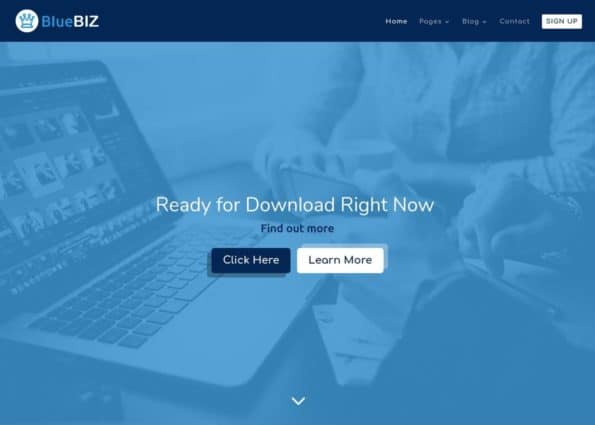 Blue Biz on Divi Gallery