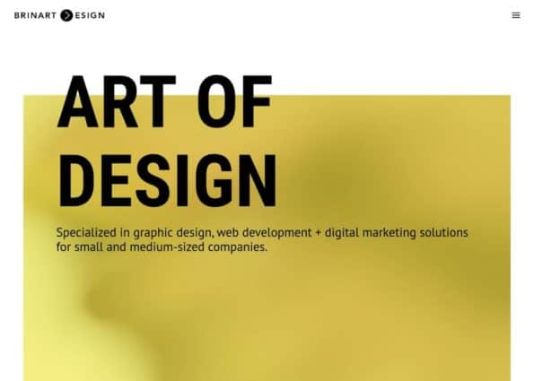 Brinart Design on Divi Gallery