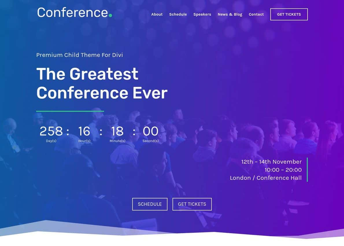 Conference Divi Theme Example