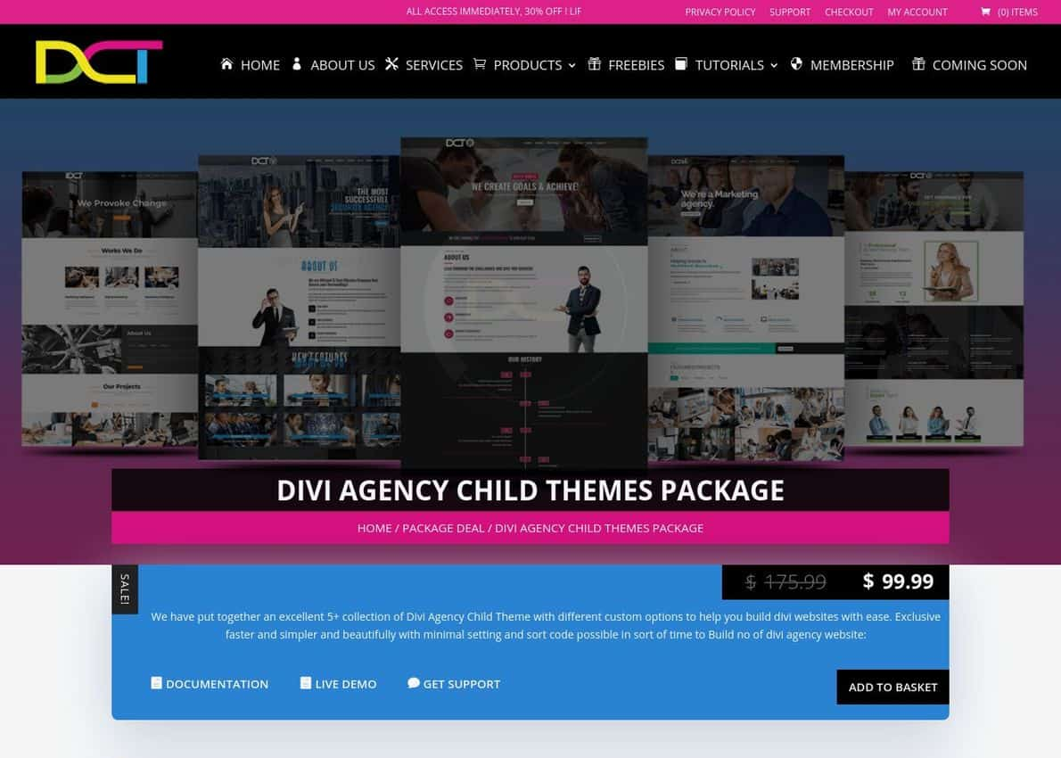 Divi Agency Child Themes Package Divi Theme Example