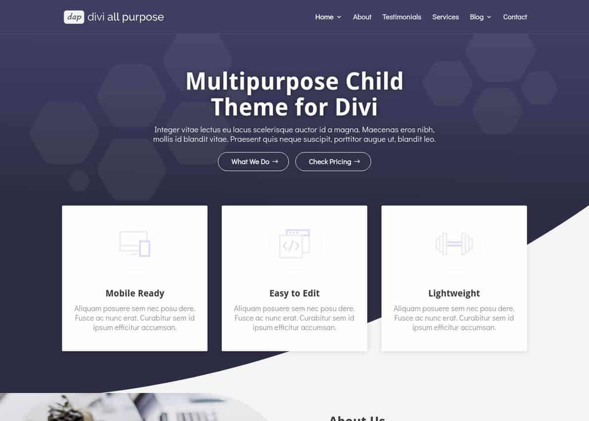 Divi All Purpose Divi Theme Example