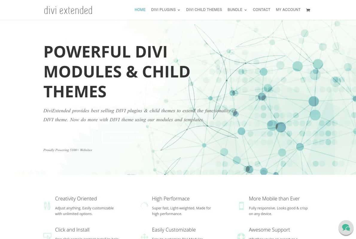 Divi Extended Divi Theme Example
