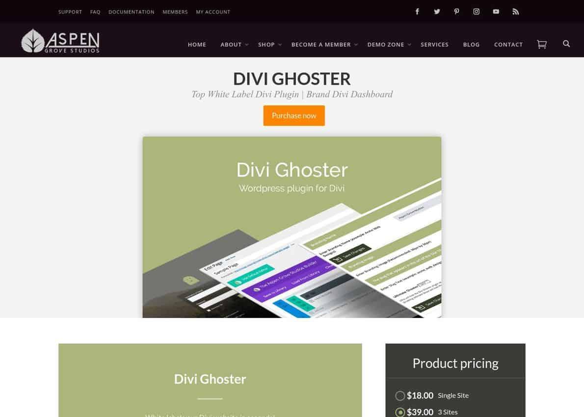 Divi Ghoster Divi Theme Example