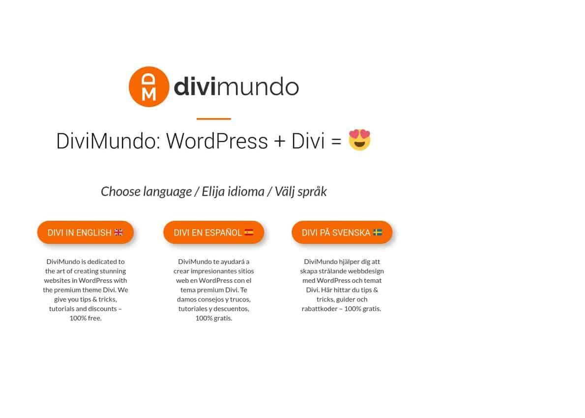 DiviMundo Divi Theme Example