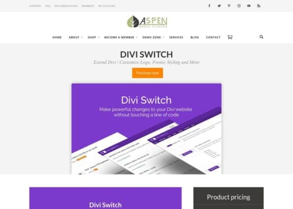 Divi Switch on Divi Gallery
