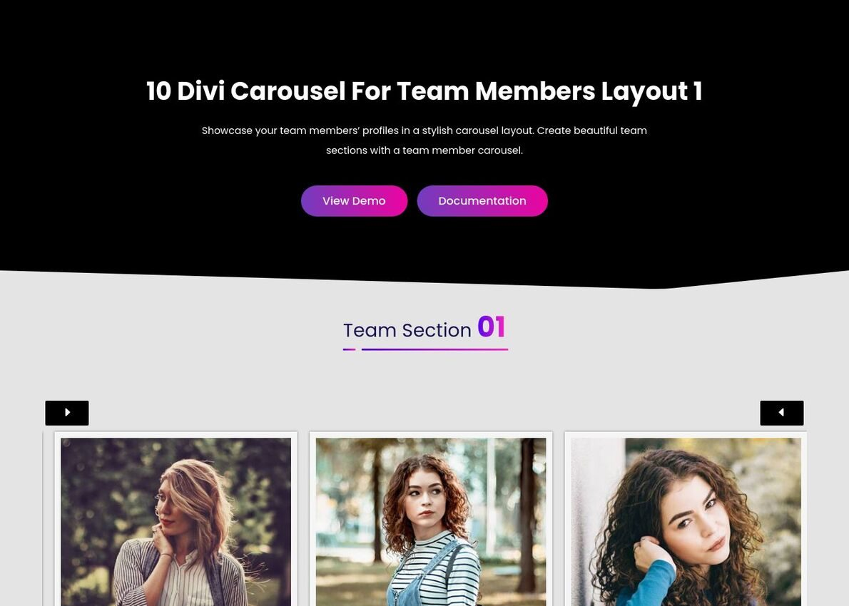 Divi Team Carousel Divi Theme Example
