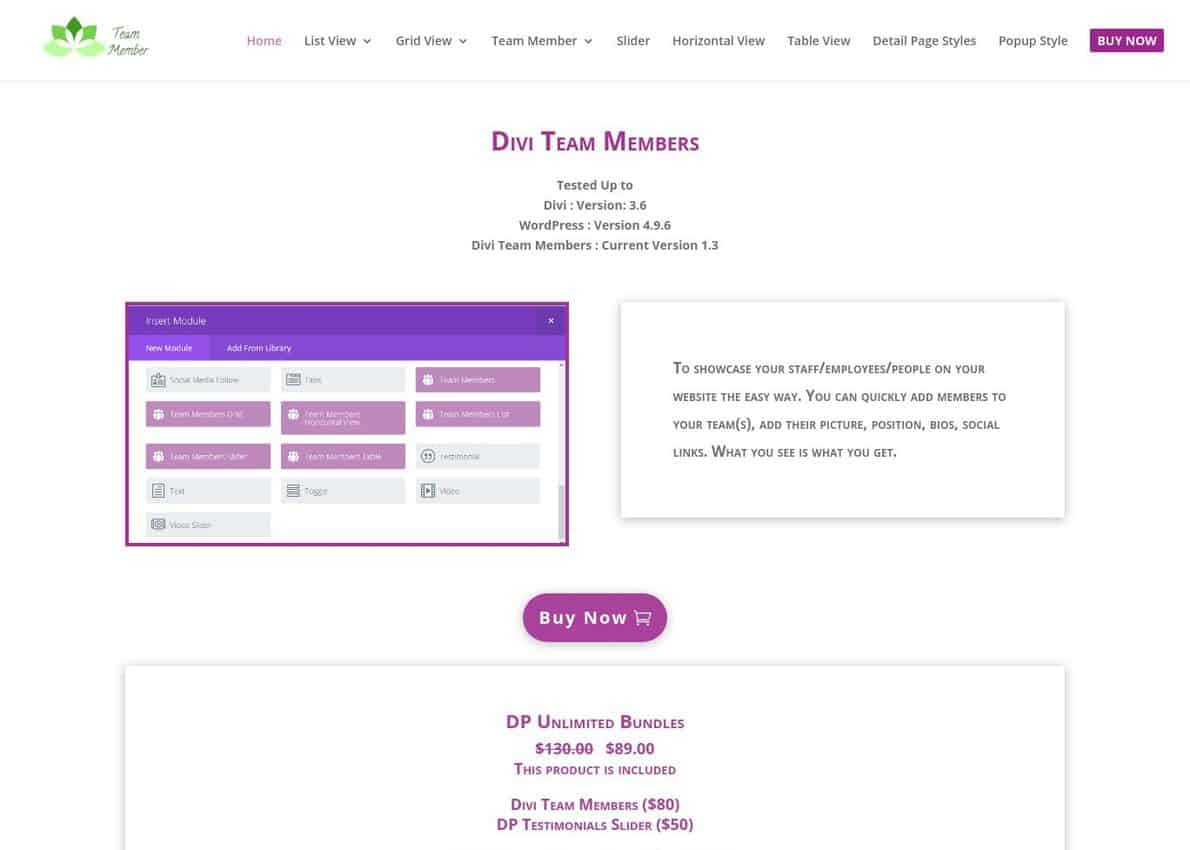 Divi Team Member Plugin Divi Theme Example