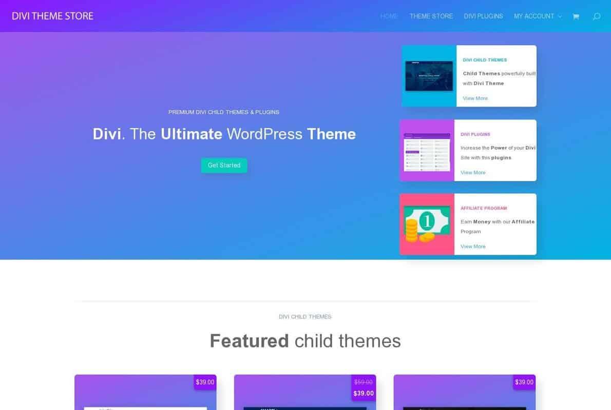 Divi Theme Store Divi Theme Example