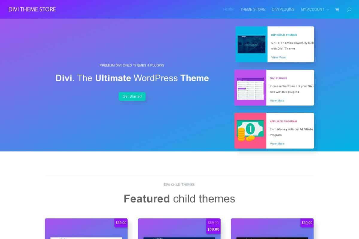 Divi theme store website divi gallery - Divi theme ecommerce ...