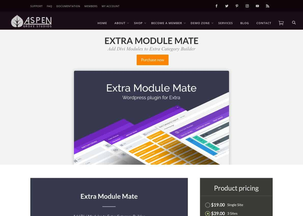 Extra Module Mate​​​​​​ Divi Theme Example
