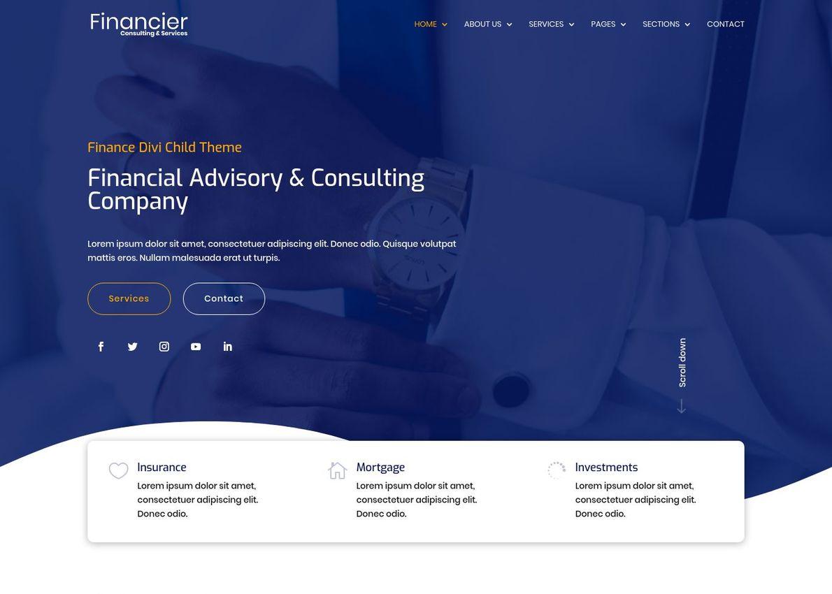 Financier Multipurpose Theme Divi Theme Example