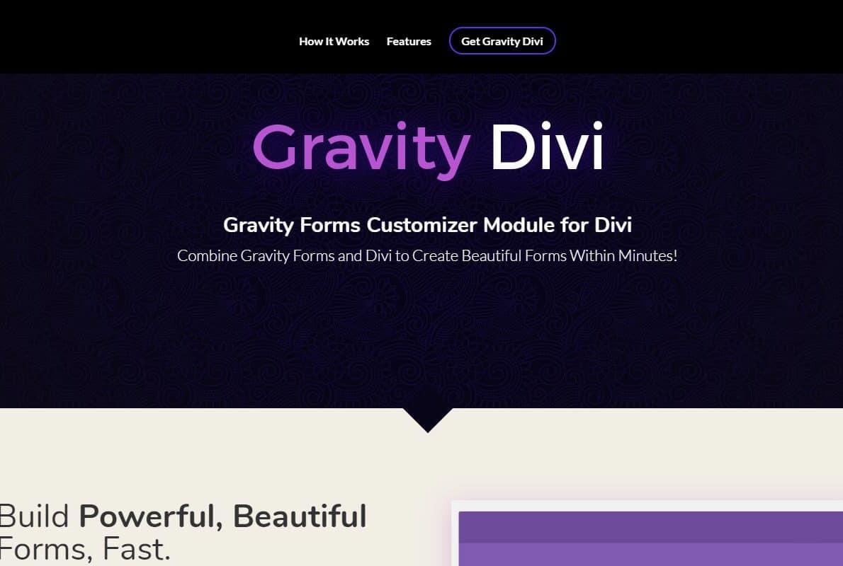 Gravity Divi Divi Theme Example
