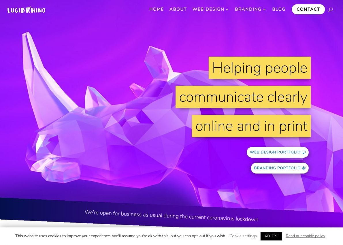 Lucid Rhino Web Design Divi Theme Example