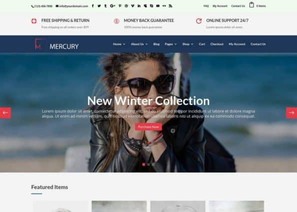 Mercury – Divi WooCommerce Child Theme on Divi Gallery