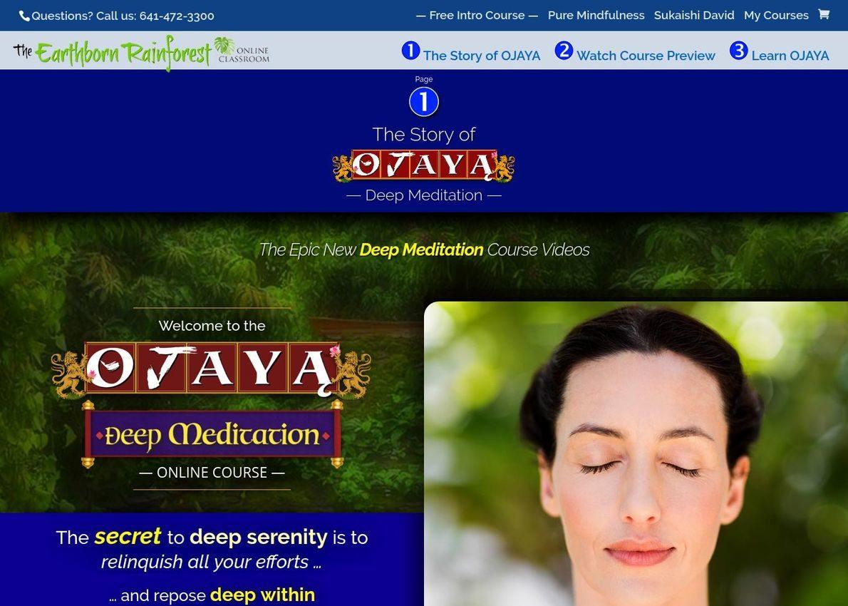 OJAYA Deep Meditation Divi Theme Example