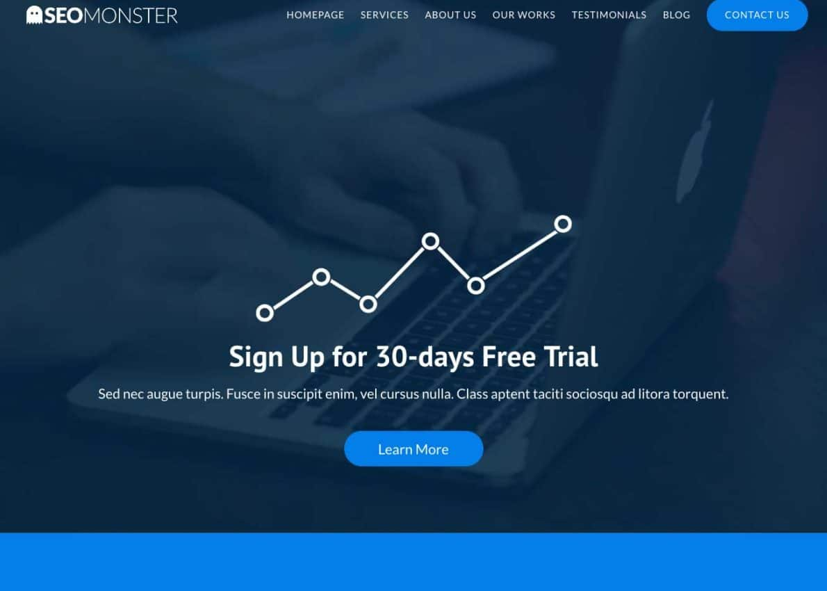 SEOMonster Divi Theme Example