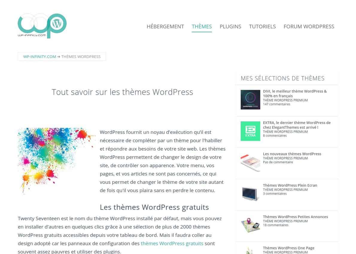 Thèmes WordPress Divi Theme Example