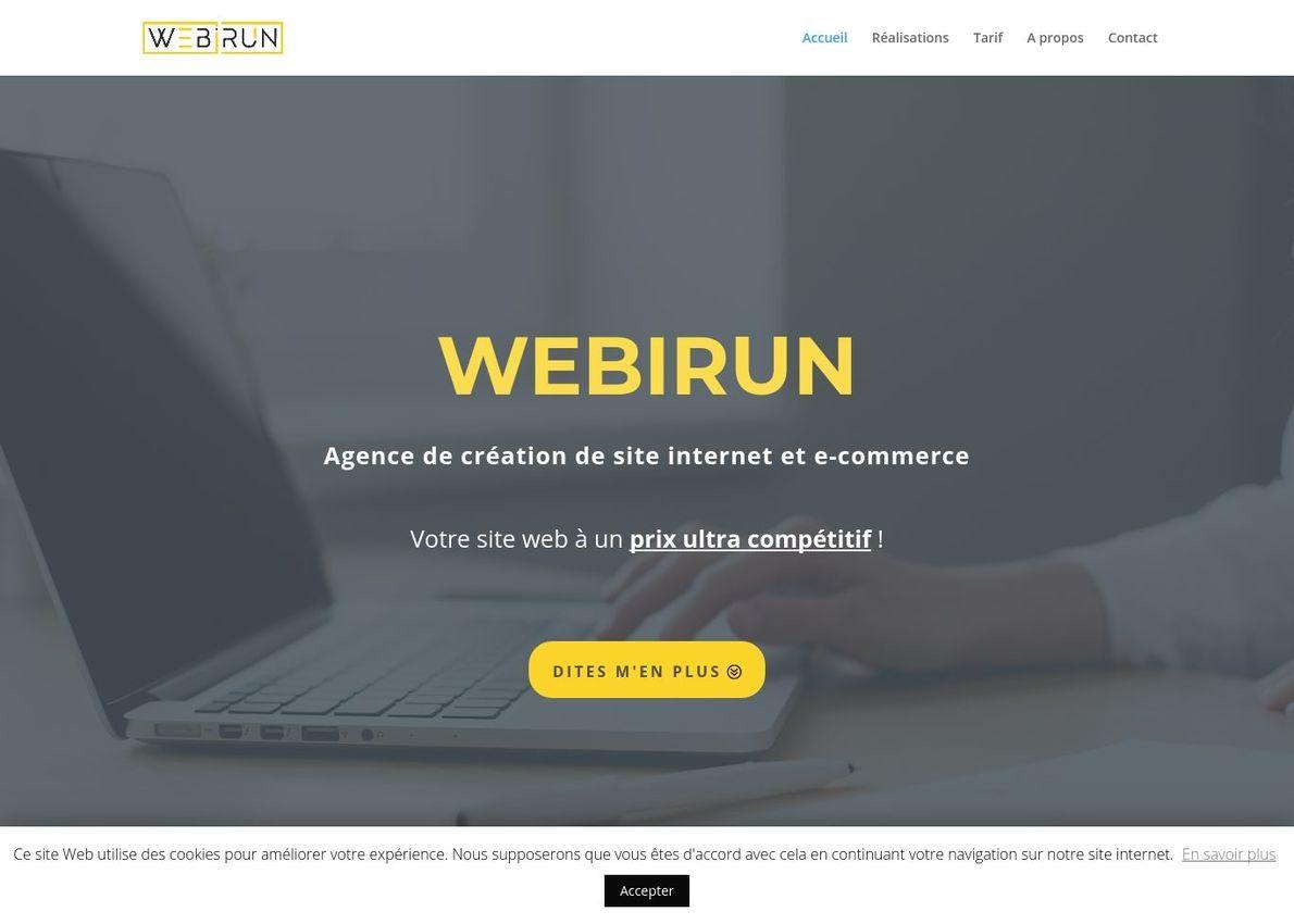 Webirun Divi Theme Example
