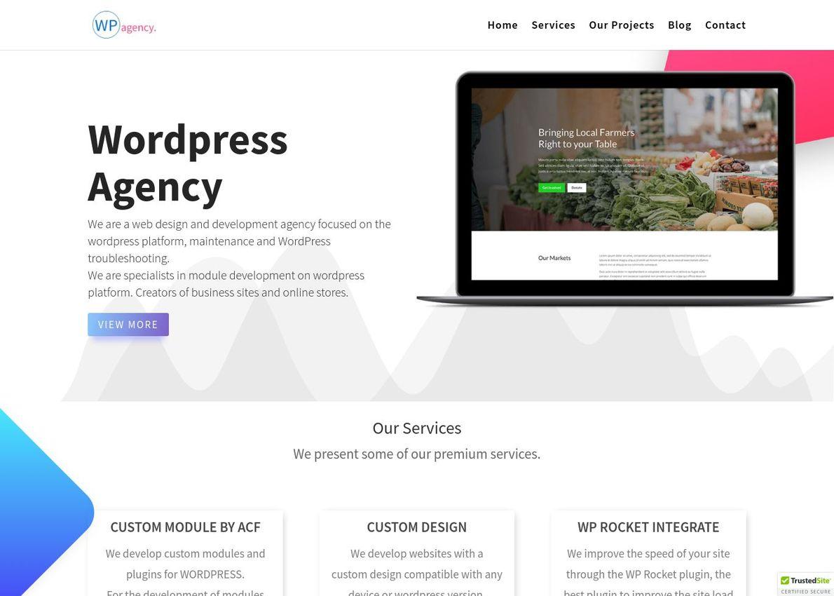 WordPress Agency Divi Theme Example