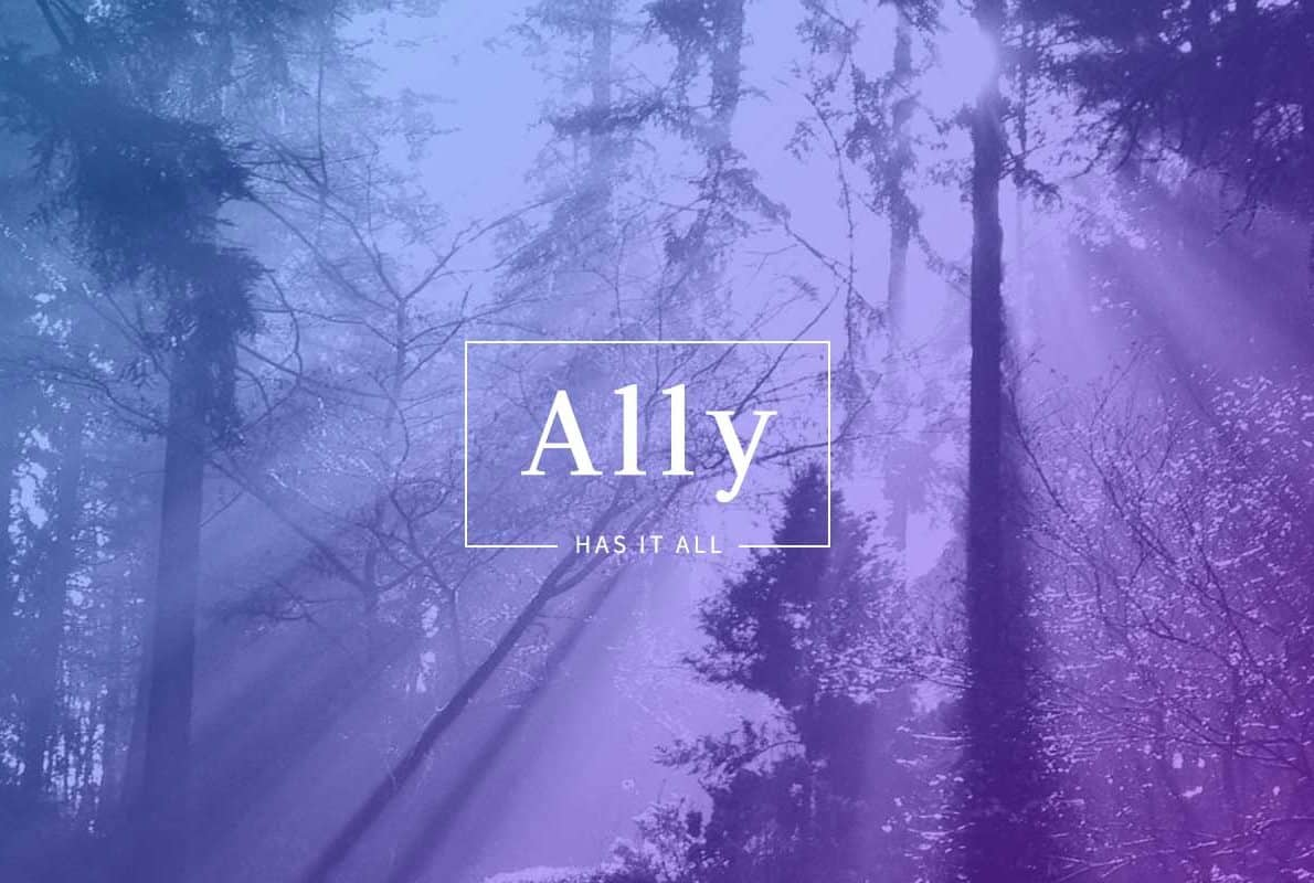 Ally Divi Theme Example