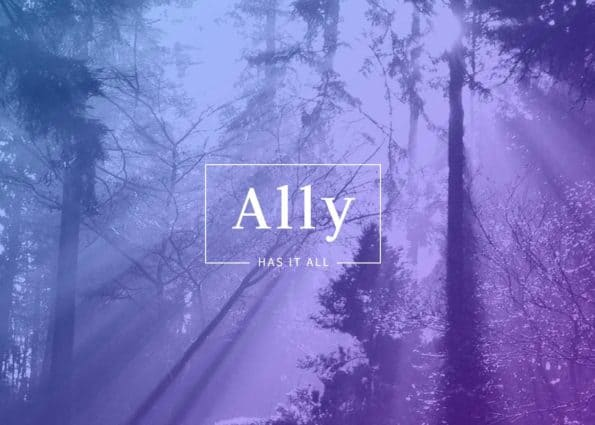 Ally on Divi Gallery